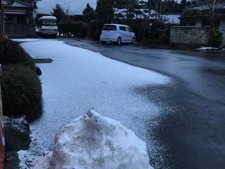 前回より少なめの雪