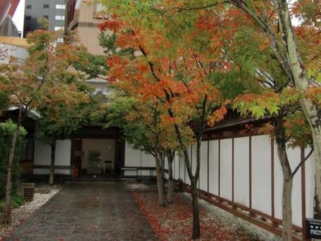 縞コロン商品取り扱い先ご紹介②小倉城庭園
