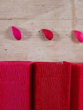 Tonalità rosso - viola