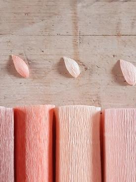 Tonalità rosa - marrone