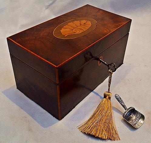 Regency Tea Caddy of Rectangular form, with Silver Caddy Spoon & Key, circa 1825