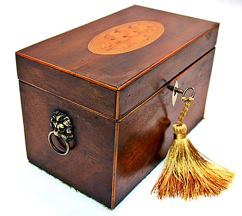 Regency two section Tea Caddy with Shell Motif & Key