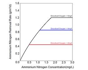Ammonium Nitrogen Removal