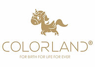 COLORLAND LOGO-PNG (1).jpg
