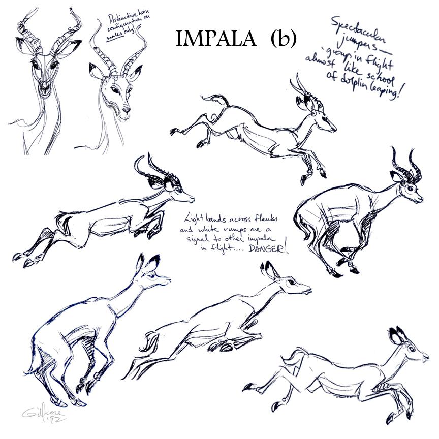 IMPALA _b.jpg