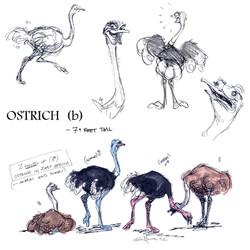 OSTRICH _b.jpg