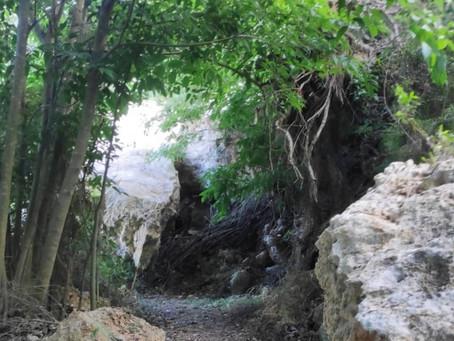 Cova Llarga – Valleta (a pie)