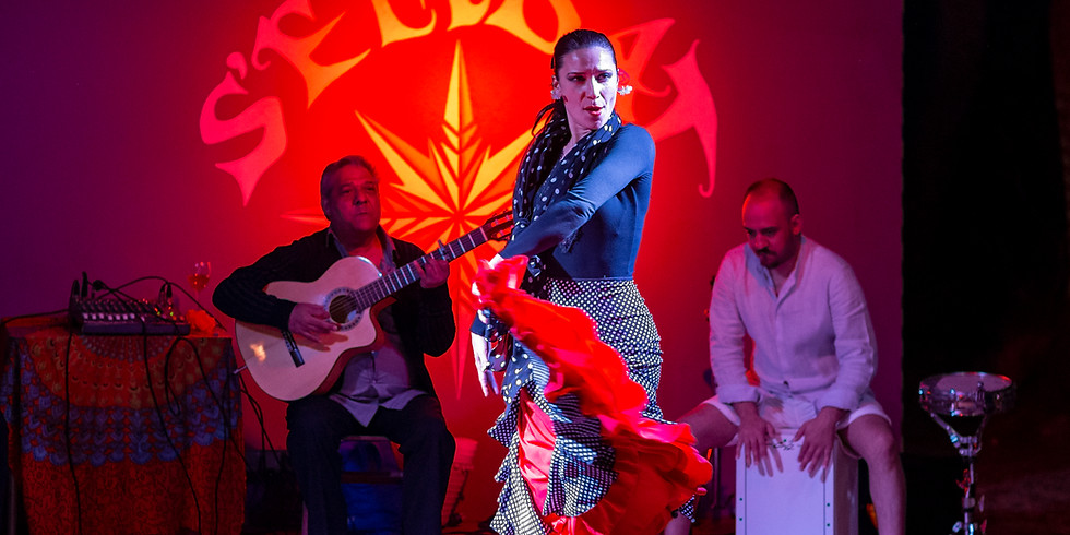 Noches de Flamenco