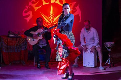 s_embat_flamenco.jpg