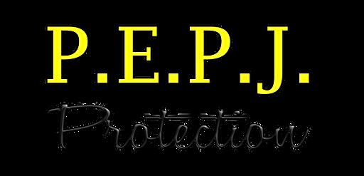 P.E.P.J. Protection Portail Alarme Videos surveillances Domotique Gers Empeaux 32
