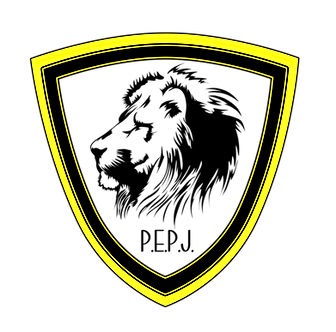 P.E.P.J. Protection Alarme Domotique Video surveillance Gers Auch 32