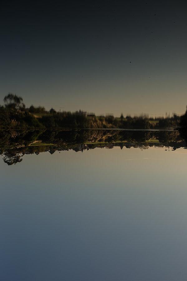 NatureMay19-6221.jpg