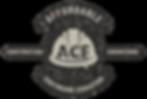 ACE Con Ed Logo