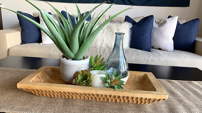 succulent tray in living room.heic
