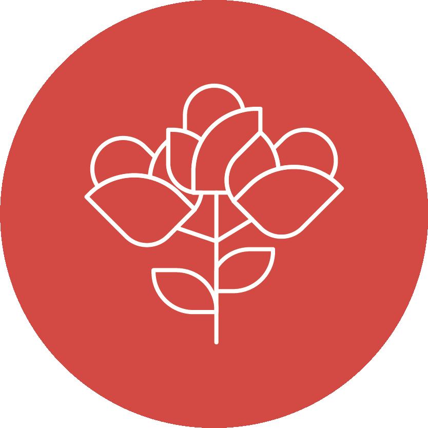 Floristik und Pflanzdekorationen