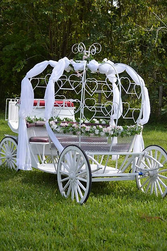 Pony princess carriage