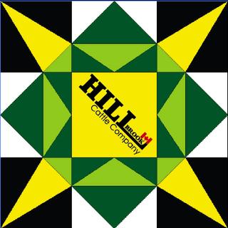 Hillbrook's Star