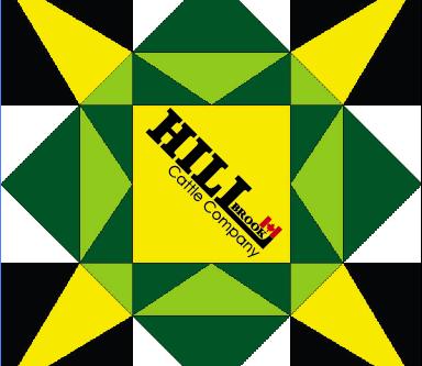 Barn Quilt Spotlight - Hillbrook's Star
