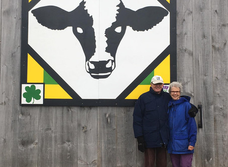 Barn Quilt Spotlight - Caledonia Cow