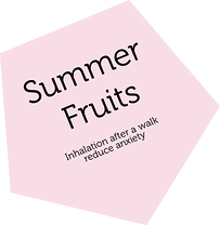 summer  fruits.png