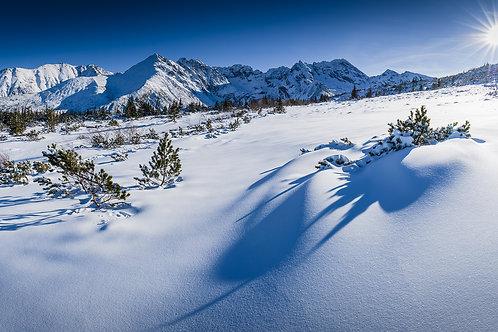 Dolina Gąsienicowa Zimą