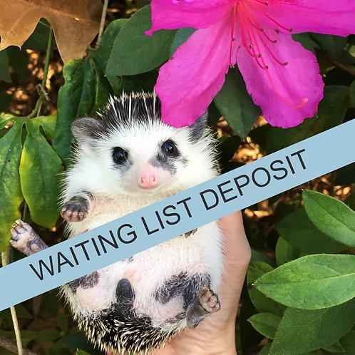 Waiting List Deposit