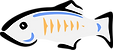 1200px-GlassFish_logo.png