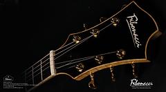 FIBONACCI GUITARS 2016 CATALOGUE