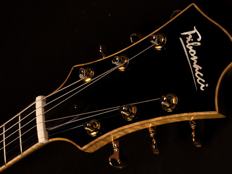 FIBONACCI GUITARS WEB UPDATES