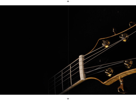 FIBONACCI GUITARS 2018 CATALOGUE IS FINALLY HERE!