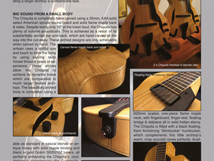 FIBONACCI GUITARS FEBRUARY 2021 NEWSLETTER