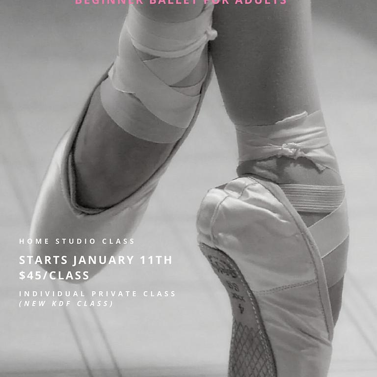 Beginner Ballet for Adults