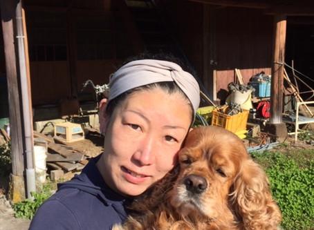 愛犬たちが健康に過ごせる安心安全な手作りご飯とおやつを販売