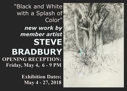 2018 May - Steve Bradbury