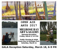 2017 March - Open Air Arts Gala