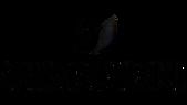 Swarovski-logo-removebg-preview.png