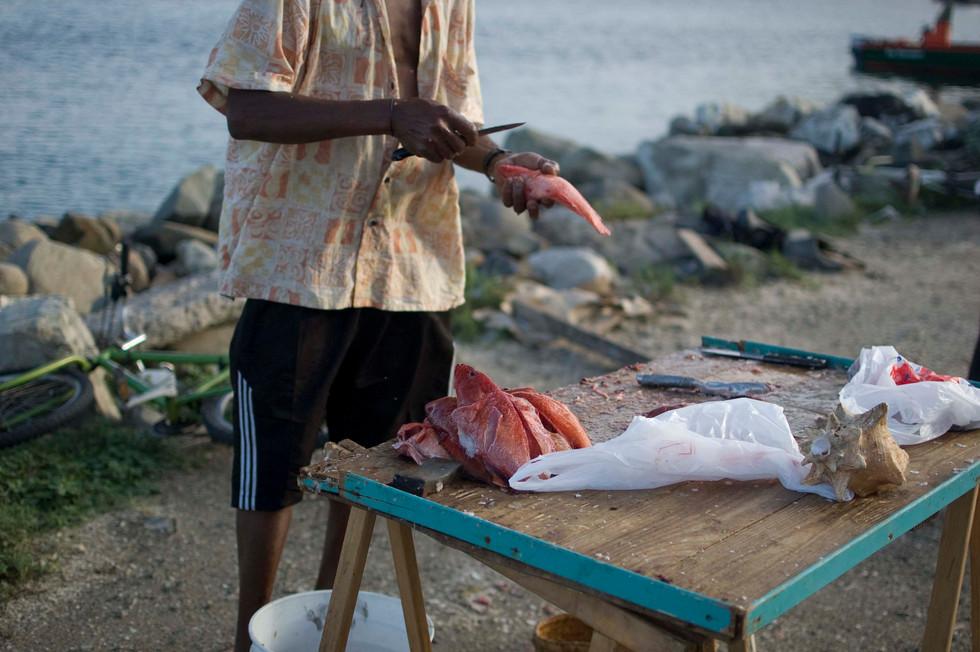 Man scales fish at Marigot Market, 2013