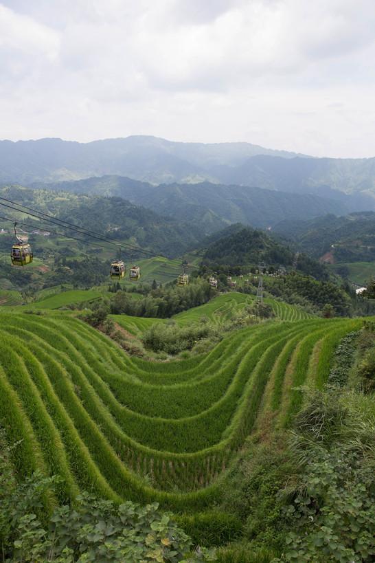 Longji Rice Terraces, 2018