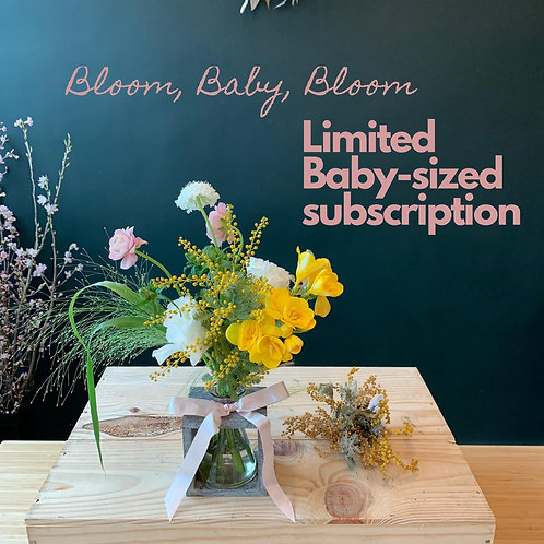 Baby-sized subscription (4weeks)