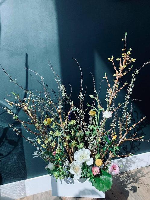 March workshop-Silent spring