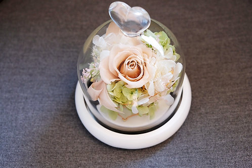Love Preserved flowers