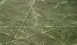 Nazca - The Condor_