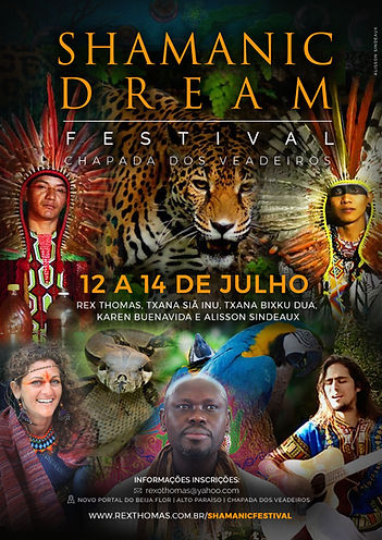 Shamanic Dream Festival 2019 2 copy.jpg