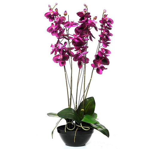 Large Coloured Silk Orchid Pot Plant in Black Container