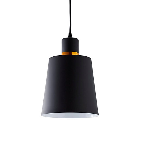 Black & Gold Pendant Light