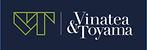 VyT logo.png