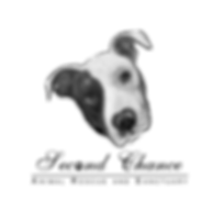 SCARS LOGO_VERTICAL.png