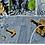 Thumbnail: DCP Micro Pile