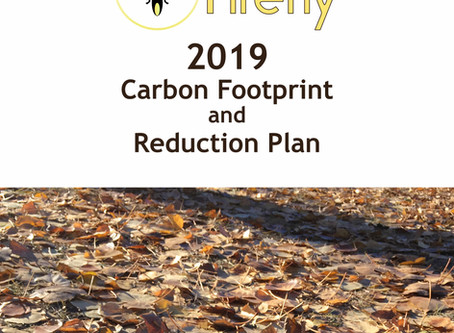 Our 2019 carbon footprint and reduction plan