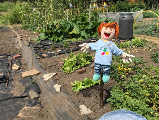 Scarecrow competition and Allotment visit